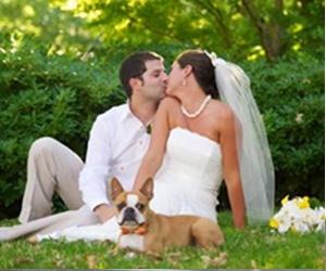 Осенняя свадебная фотосессия: выигрываем благодаря палитре цветов