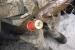 В Мезенском районе погиб молодой мужчина на охоте