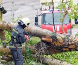 В Архангельске есть пострадавшие из-за сильного шторма