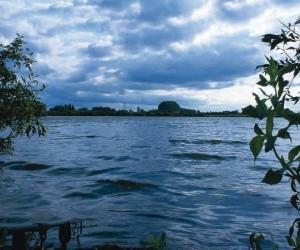 В Архангельской области в водоеме утонул мужчина