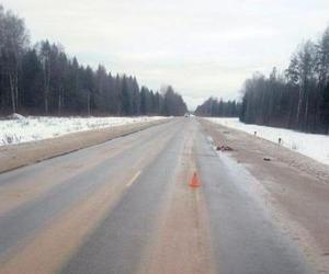 В Плесецком районе водитель сбил пешехода и оставил его на дороге