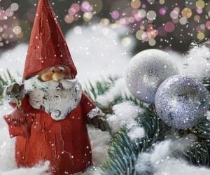 Архангельская область и столица региона готовятся встречать Новый год