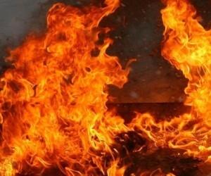 За ночь в Архангельске сгорели три ПАЗа одного маршрута