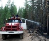 В этом году в лесах Архангельской области было мало пожаров