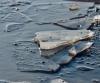 В Архангельске спасли дрейфовавшую на льдине девушку
