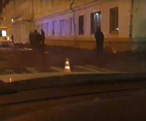 В Архангельске водитель сбил женщину с тремя собаками