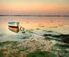 На берегу Белого моря нашли труп погибшего рыбака