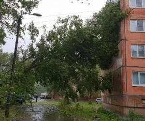 В Архангельской области объявлено штормовое предупреждение