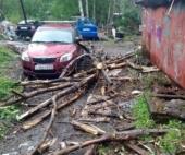В Архангельске дерево рухнуло на автомобиль и провода