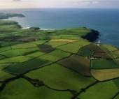 Что такое земельный кадастр?