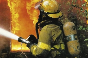 Пожар в деревне под Архангельском, есть пострадавшие
