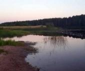В Архангельской области в озере утонула семилетняя девочка