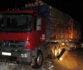 В Плесецком районе погиб рабочий при перевозке леса