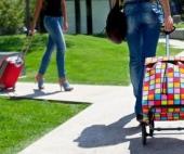 Как выбрать сумку-тележку
