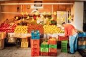 Тунис испытывает сложности с поиском покупателей на рекордный урожай апельсинов