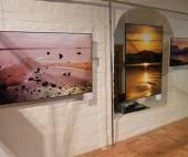 В Архангельске организована выставка фотографий с кругосветного путешествия российского парусника