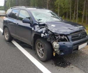 На трассе Москва-Архангельск водитель насмерть сбил пешехода