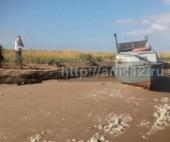 Житель Архангельска пробыл 3 дня на необитаемом острове вместе с погибшим другом