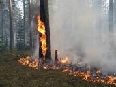 Режим чрезвычайной ситуации в Архангельске был отменен
