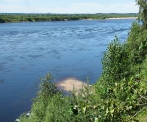 Реку Вага загрязняют сточные воды