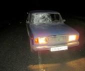 В Архангельской области водитель сбил пьяного пешехода
