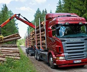 В Архангельской области мужчина погиб под колесами лесовоза