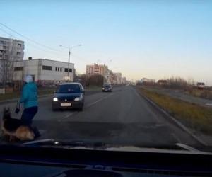 В Северодвинске сбили женщину с собакой